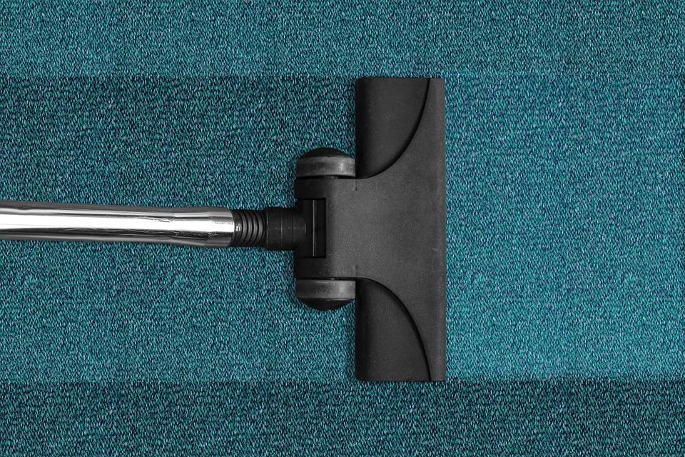 Cómo limpiar la moqueta